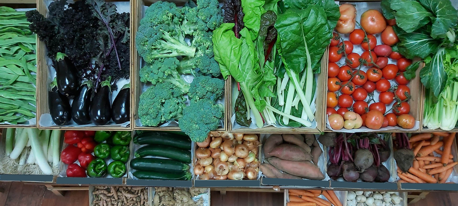cesta-verduras-a-cesta-da-saude