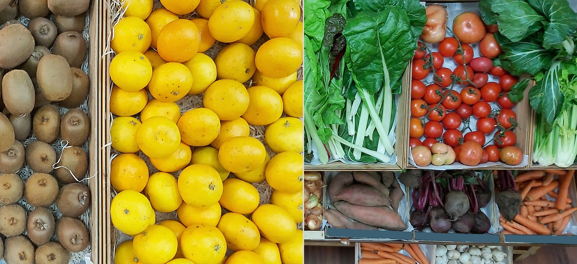 cesta-verduras-e-froitas-a-cesta-da-saude